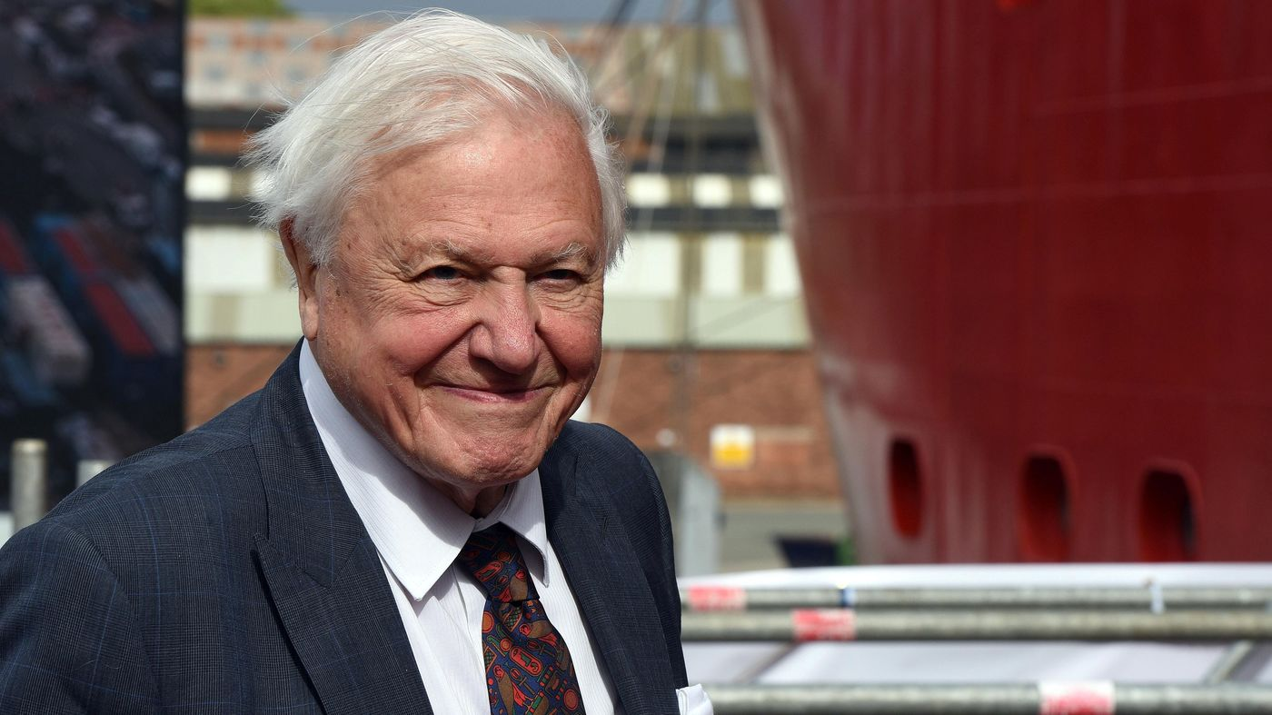 Sir David Attenborough Reaches 1M Instagram Followers In Hours, Breaking World Record